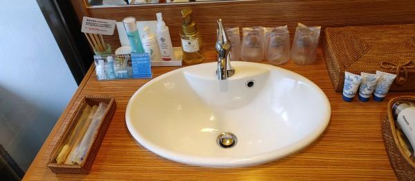 和の宿 ホテル祖谷温泉 洗面所