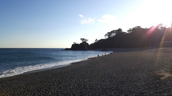 桂浜 海岸