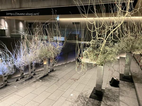 京都 スカーラエ