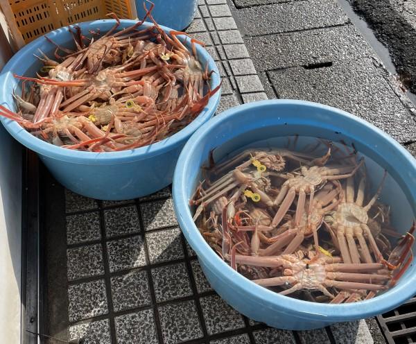 田島魚問屋 福井
